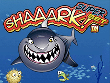 Автомат Shaaark Superbet накроет волной азарта онлайн в клубе Вулкан