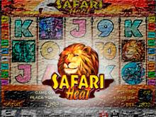 С автоматом Safari Heat охота на реальные деньги в казино Вулкан